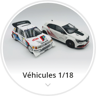 categorie-vehicules-1-18