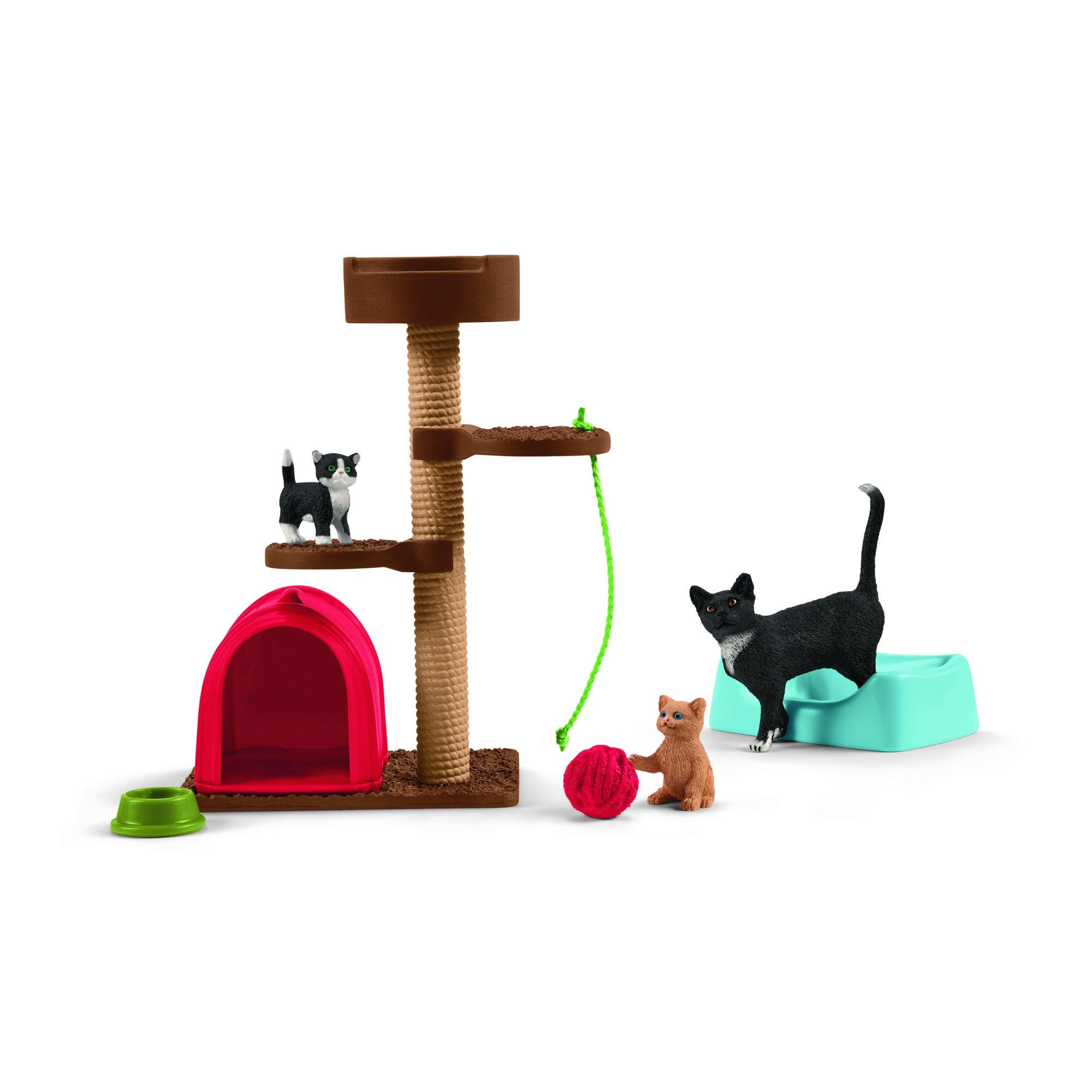 Aire de jeu pour chats adorables