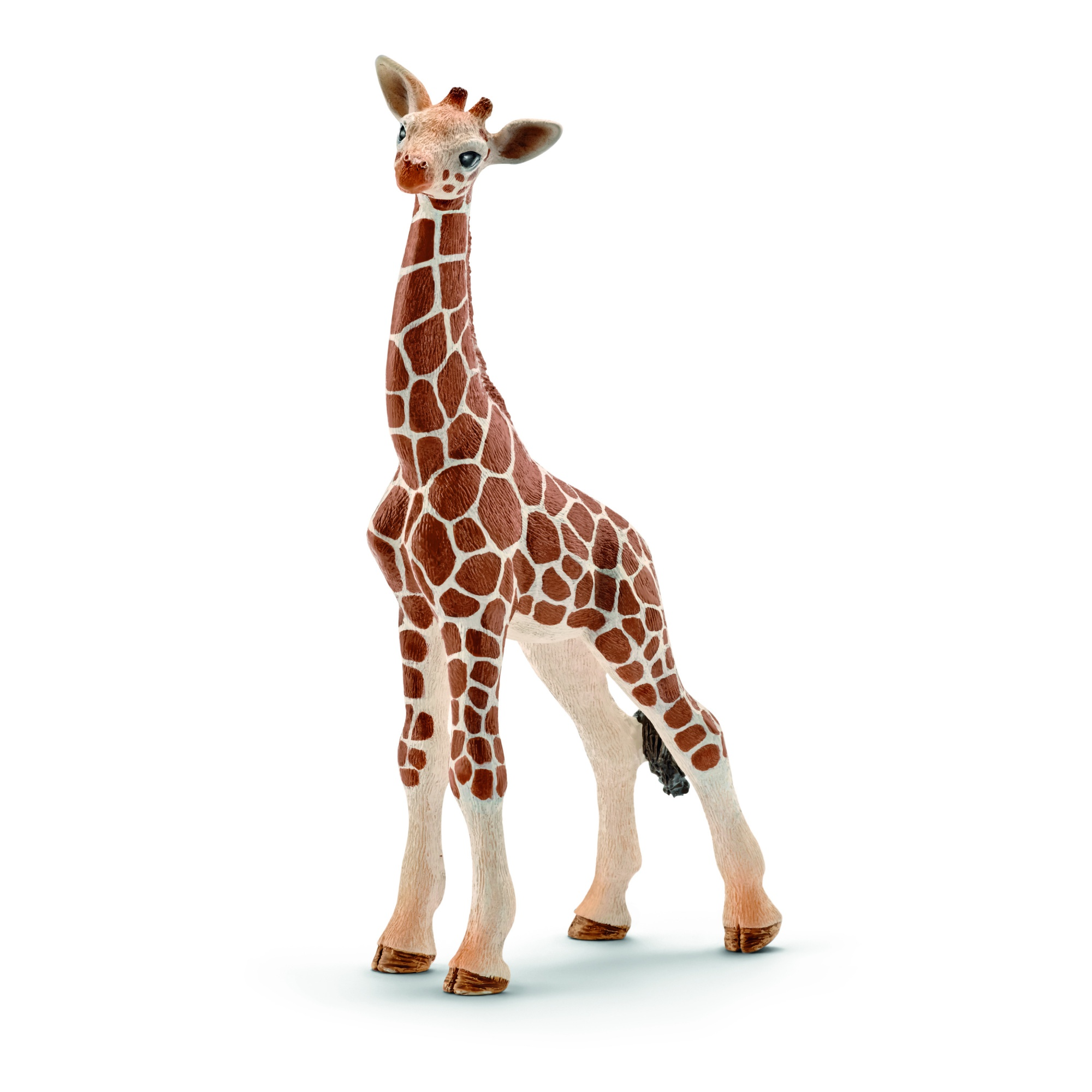 Bébé Girafe