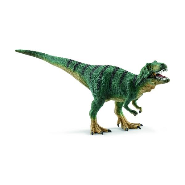 Jeune Tyrannosaure Rex