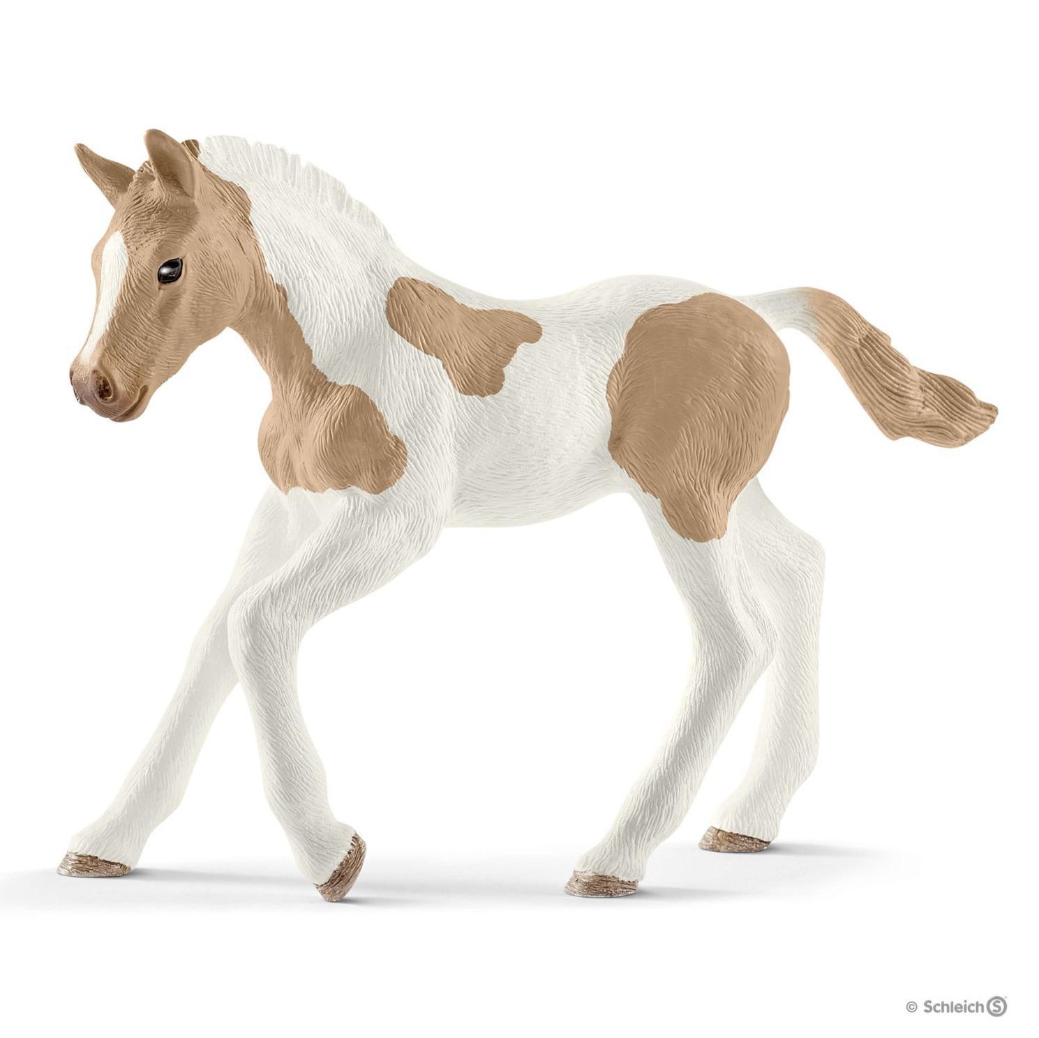Poulain Paint Horse