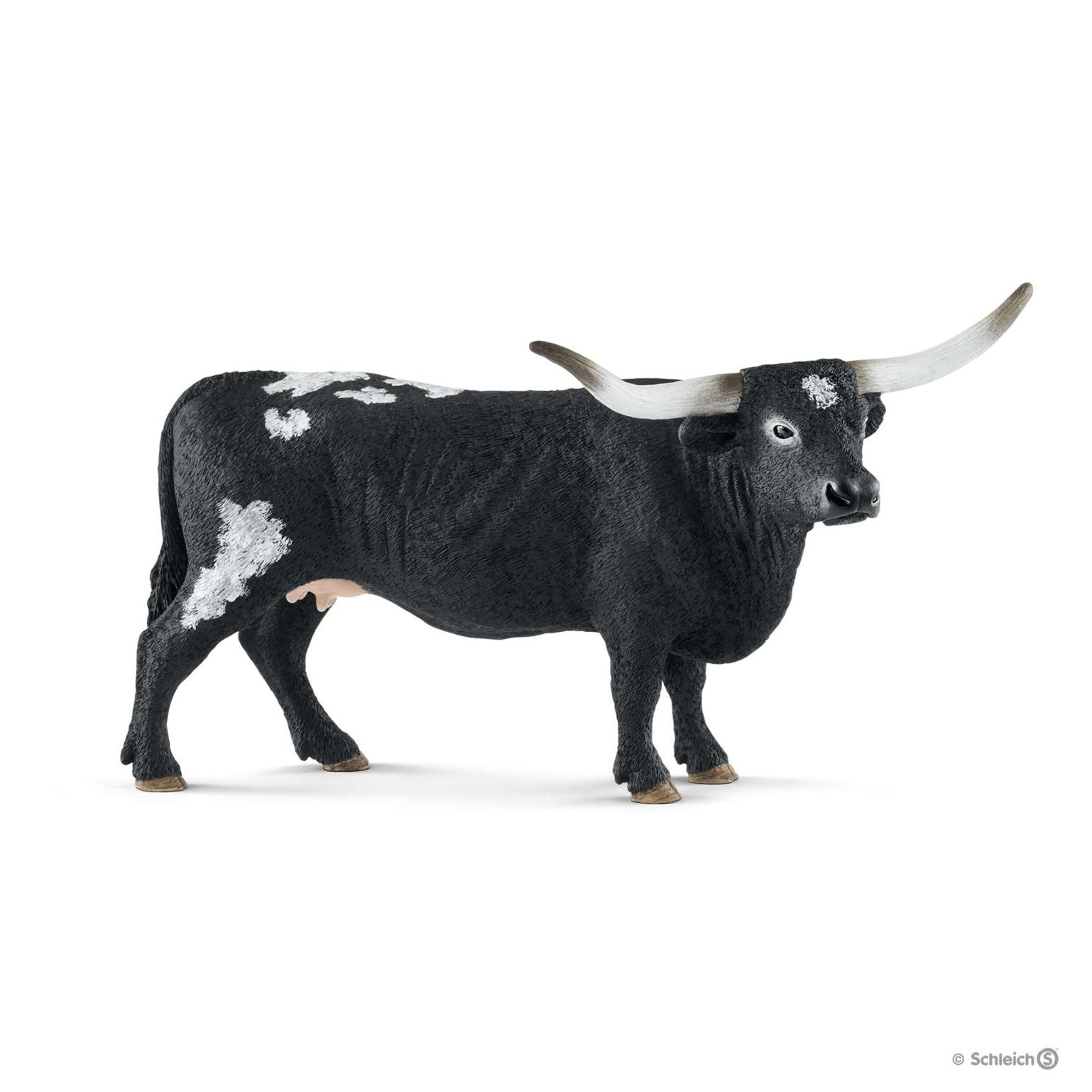 Vache Texas Longhorn